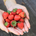 Food For Beauty: Strawberries