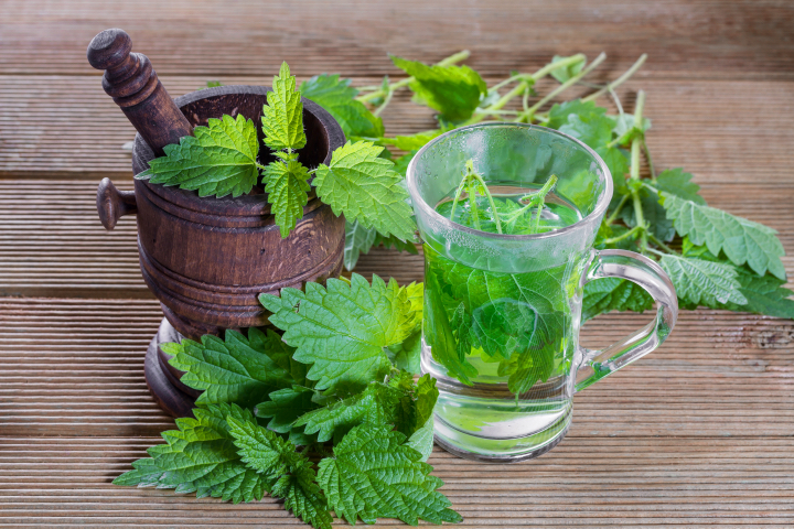 5 Nettle Recipes for Gorgeous Hair, Skin & Nails